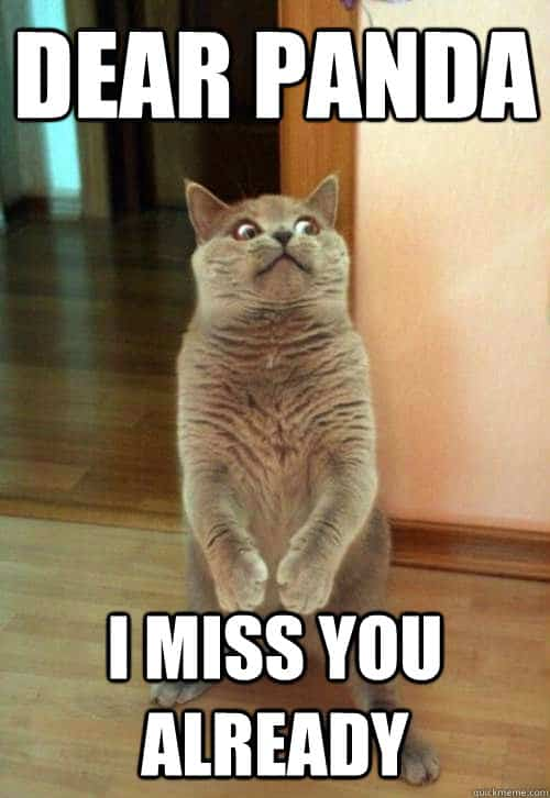Funny Miss You Memes For Her : Funny i miss you memes and images for him her